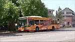 koopmannbus.jpg
